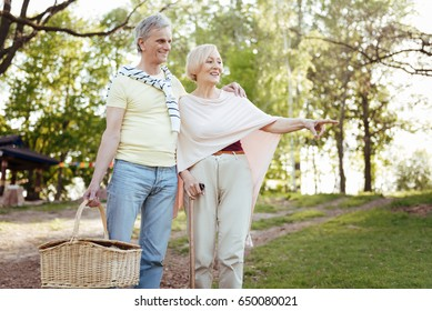 Cheerful pensioners looking for the place for picnic outdoors