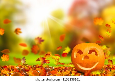 cheerful pumkin face in autumnal nature