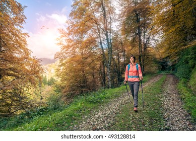 Cheerful young healthy fit sporty hiker woman hiking outside in a forest autumn landscape with sun and sunbeam in the sky. Femaleduring stroll with backpack and poles in Asturias, Spain, Europe.