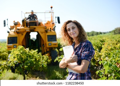 cheerful young woman agriculture engineer in a vineyard before grape harvest
