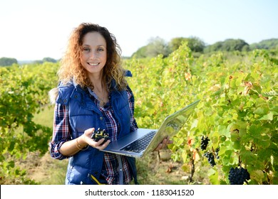 cheerful young woman agriculture engineer with a laptop computer in vineyard