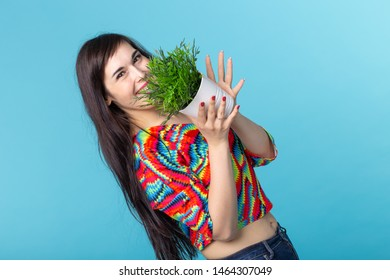 Cheerful young woman is holding a pot with a plant posing against a blue background. Concept of gardening and interior accessories.