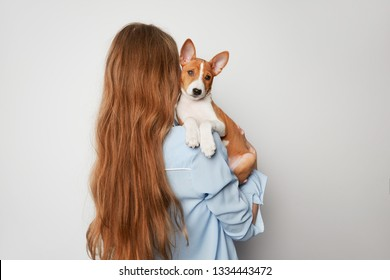 Cheerful young woman hugging and kissing her puppy basenji dog. Love between dog and owner. Isolated on white background.