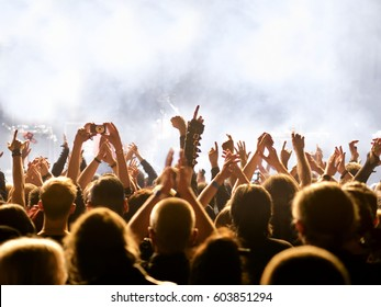 cheering crowd at a rock concert