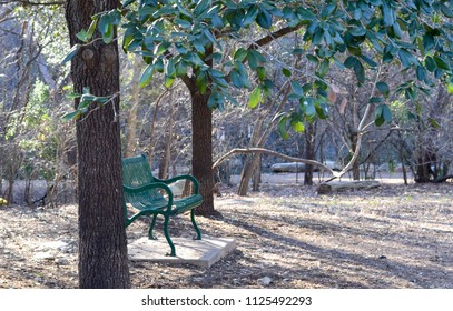 Cheery green bench in solitude among the trees