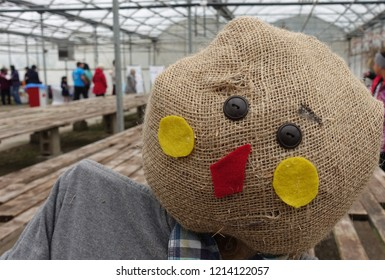 Cheery Scarecrow with People in Background in Garden Center
