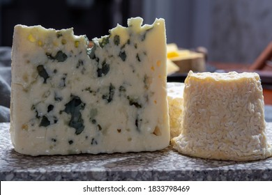 Cheese collection, French semi hard Roquefort blue cheese made from sheep milk in region Roquefort-sur-Soulzon, France close up