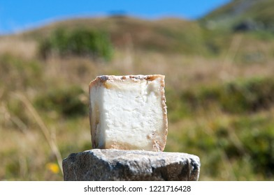 The cheese is made from the milk of mountain cows.