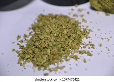 cheese quake is an indica strain of cannabis