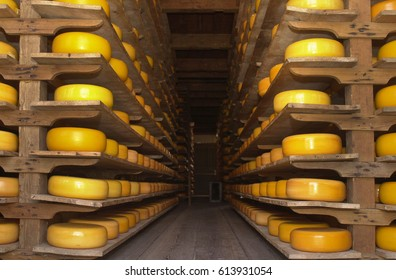 Cheese stacked on shelves in a cheese farm