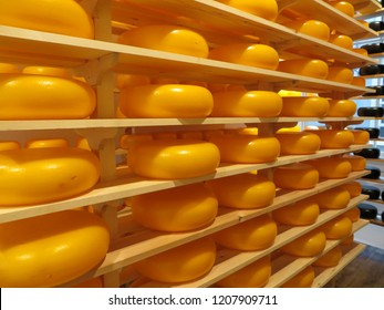 Cheese wheels on the shelves in Amsterdam store, The Netherlands.