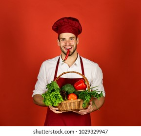 Chef in burgundy uniform holds red chili in mouth. Healthy and spicy food concept. Man with beard with spicy smile on red background. Cook with smiling face holds chili and basket of fresh veggies.