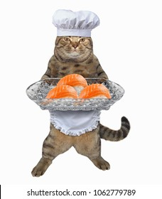 The chef cat holds a sushi tray. White background.