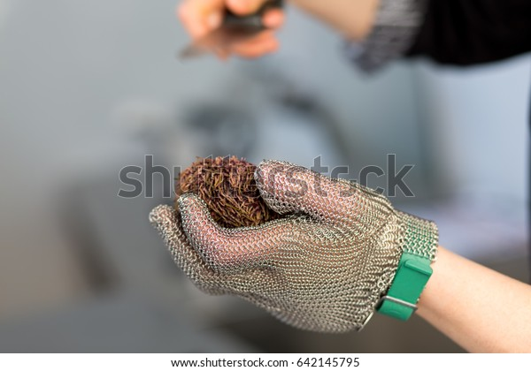 chef-cook-cuts-sea-hedgehog-600w-6421457