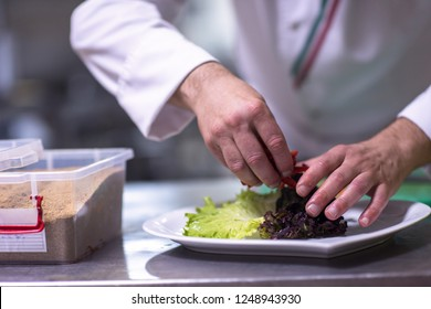 chef serving vegetable salad on plate in restaurant kitchen