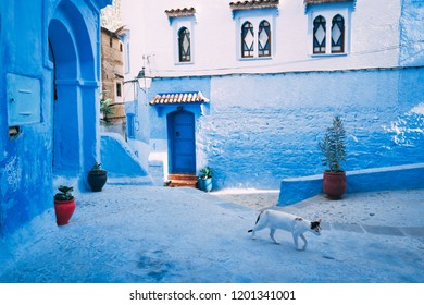 Chefchaouen, Morocco big blue square of traditional old medina -
