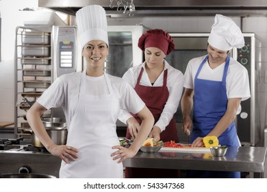 Chefs and cooks in a professional kitchen