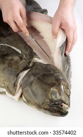 Chef's hands cutting a fresh turbot