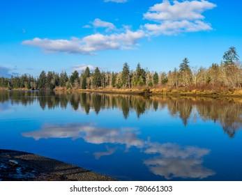 Chehalis River Preserve, Washington State, USA.