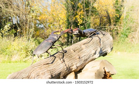 Chelmsford / United Kingdom - March 23 2017:  Statue from inclined tree trunk. Two male beetles (Latin: Lucanus) climbed on top of the stump and fighting there. Public park in Eastern England.