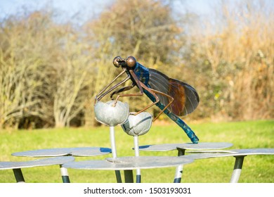 Chelmsford / United Kingdom - March 23 2017: A statue of the dragonfly black-tailed skimmer (Latin: Orthetrum cancellatum) on huge Nymphaea leaves in Eastern English public park. Green grass as water.