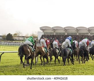 CHELTENHAM, GLOUCS; NOV 14: jockeys race up the hill in the fourth race at Cheltenham Racecourse, UK, November 14, 2009 in Cheltenham, Gloucs