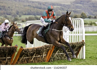 CHELTENHAM GLOUCS OCT 20 2012 Daryl Jacobs Takes Brass Tax Over Hurdles At