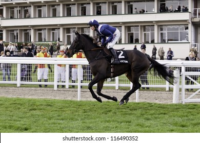 CHELTENHAM GLOUCS OCT 20 2012 Jockey Harry Derham Takes Rebel Du Marquis To