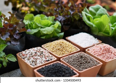 Chemical fertilizers, main nutrients and secondary nutrients in terracotta pots. The main nutrients are nitrogen, phosphorus, potassium and secondary nutrients are calcium , magnesium and sulfur.