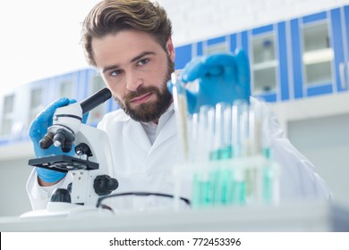 Chemical lab. Serious nice handsome scientist sitting at the table and looking at the test tube while working test samples