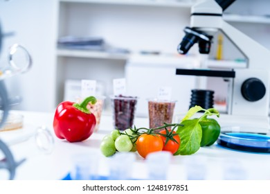 Chemical Laboratory of the Food supply . Food in laboratory, dna modify .GMO Genetically modified food in lab