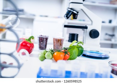 Chemical Laboratory of the Food supply. Food in laboratory, DNA modify. GMO Genetically modified food in lab.