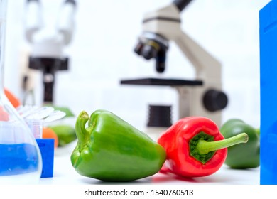 Chemical Laboratory of the Food supply . Food in laboratory, dna modify .GMO Genetically modified food in lab .