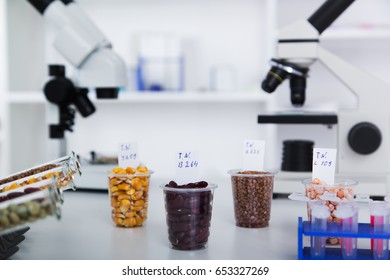 Chemical Laboratory of the Food supply . Food in laboratory, dna modify .