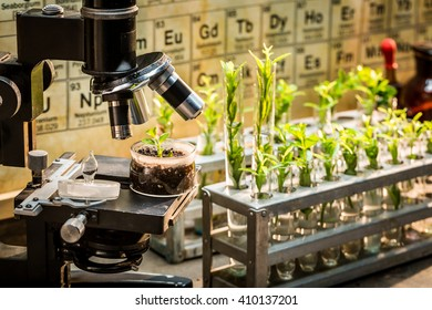 Chemical laboratory with microscope and plants