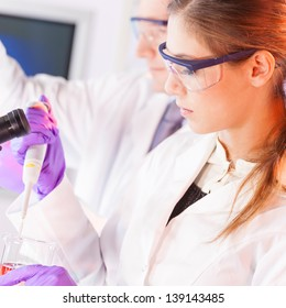Chemical laboratory scene: attractive young scientist pipetting  red indikator solution.