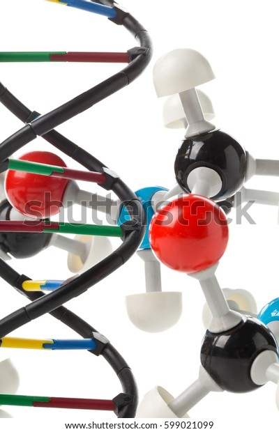 Chemical molecule model and DNA structure model over white background. Science or research concept