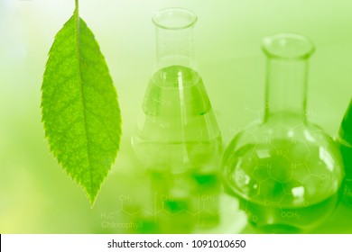 Chemical Science and Bio Technology of Green nature herbal extraction in laboratory for background.