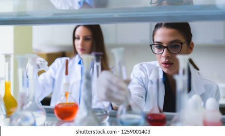 Chemistry and medicine students working in a laboratory