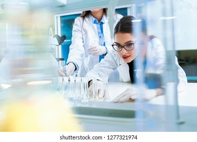 Chemistry and medicine students working in a laboratory. Young female researchers doing lab tests.