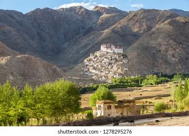 Chemre or Chemrey Village and monastery, near Leh, Ladakh, India