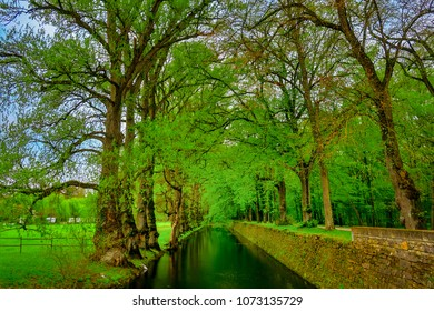 Chenenceaux, Loire Valley, France - 4/5/2017: Sycamore trees line the moat leading to the entrance of the Chateau de Chenonceau.