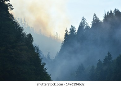 Cheney, WA/USA- July 26 2019 : Photograph of smoke from Graham Wildfire