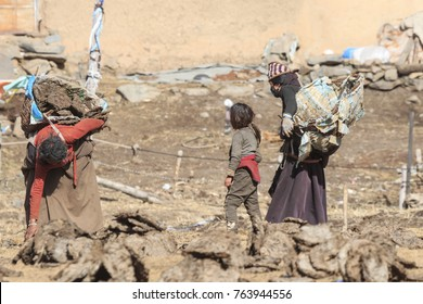 ChengDu, China - November 15, 2017: Tibetan family in a remote part of SiChuan collecting Yak's dung. Yak's dung it's used to heat the houses on winter