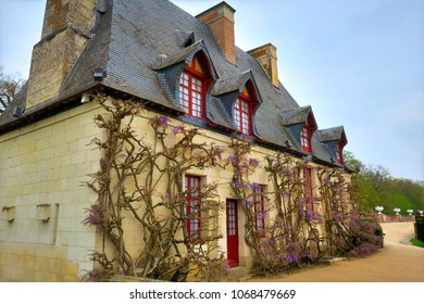 Chenonceaux, France - 4/5/2017: Wistera vines grow up the facade of the Chateau de Chenonceau chancellery building located in the Loire Valley.