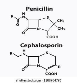 Chephalosporin and penicillin structure