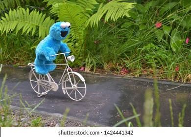 Cherkasy, Ukraine, June 13, 2019 - Toy Cookie monster funny riding a white bicycle on the path among the plants