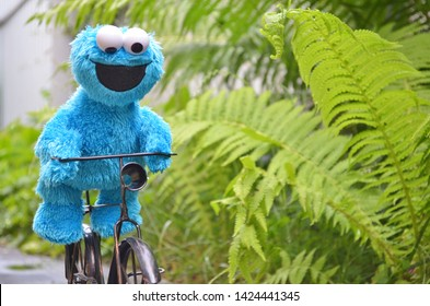 Cherkasy, Ukraine, June 13, 2019 - Toy Cookie monster funny riding a black bike on the path among plants