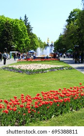 Chernihiv / Ukraine. 06 May 2017: people have a rest in the city park with big trees wide footpath and fountains. 06 May 2017 in Chernihiv / Ukraine.