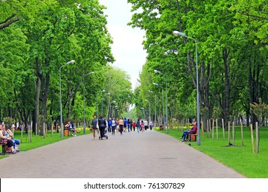 Chernihiv / Ukraine. 06 May 2017:people are walking in the beautiful city park with nice promenade path and big green trees. City park in the spring. 06 May 2017 in Chernihiv / Ukraine.
